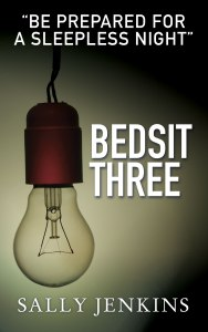 Bedsit Three by Sally Jenkins