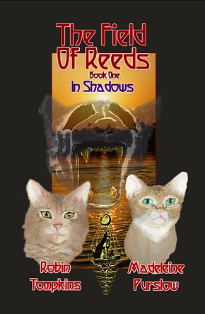 Smallest Maddie Field of Reeds in Shadows 5 x 8 book one